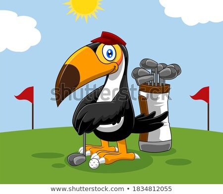 Cartoon Toucan Bird Player With Ball Stok fotoğraf © HitToon