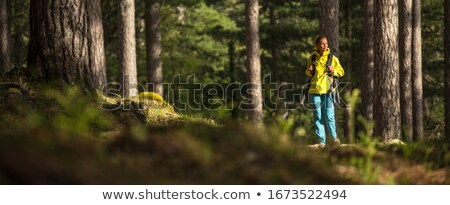 Pretty, young female hiker walking through a splendid old forest Stock photo © lightpoet