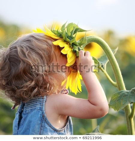 fiori · natura · bellezza · impianto · bella · erbe - foto d'archivio © arts