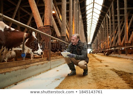 Technician writing on clipboard at meat factory Stock photo © wavebreak_media