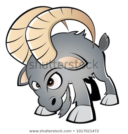 Zły cartoon baran ilustracja patrząc owiec Zdjęcia stock © cthoman