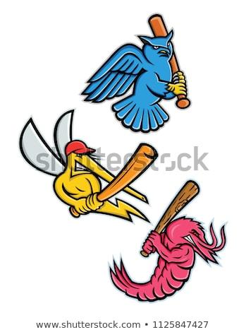 Sivrisinek beysbol maskot ikon örnek küçük Stok fotoğraf © patrimonio