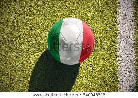 Italian Soccer Ball Stock photo © bestmoose