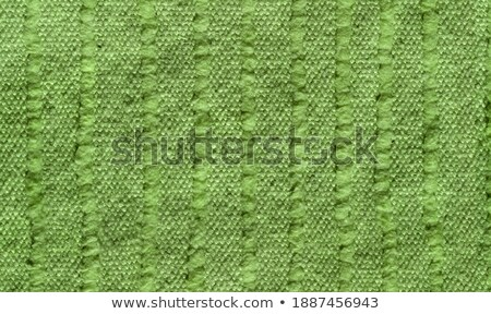 Hi resolution green moquette background Stock photo © shutswis