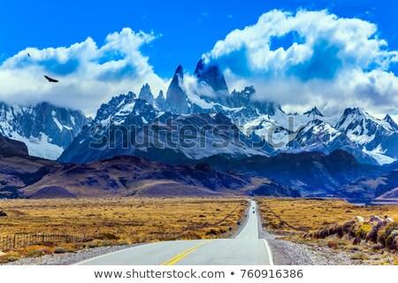 Stock fotó: Csúcs · argentín · felhők · tájkép · hó · hegy