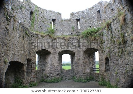 ruins of the old castle stock photo © ondrej83