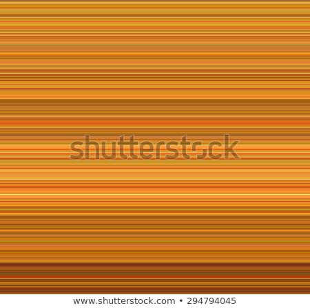 tube striped background in many shades of orange Stock photo © Melvin07