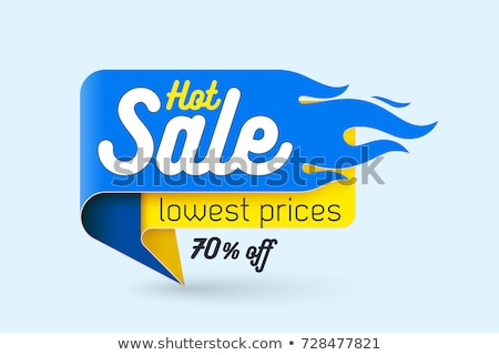 Deal Of The Day Blue Vector Icon Design Stock photo © rizwanali3d