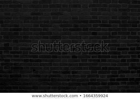 grunge · vieux · mur · de · briques · espace · de · copie · monochrome - photo stock © szabiphotography