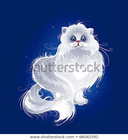 магия белый персидская кошка окрашенный пушистый темно Сток-фото © blackmoon979