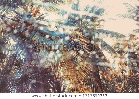 branch of painted blue leaf on a glass with shadows stock photo © artjazz