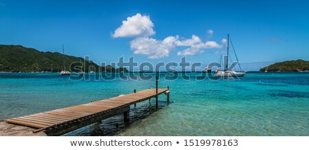 beautiful beach with wooden pier in bay  Stock photo © meinzahn