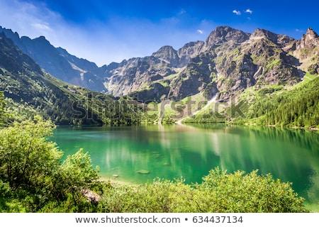 Stok fotoğraf: Gölet · dağlar · yaz · panorama · yüksek · Bina