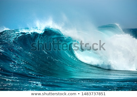 Crashing Waves on an Ocean Coast Stock photo © wildnerdpix