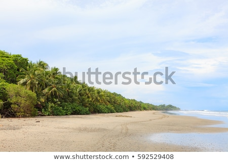 Big open sand beach montezuma Stock photo © Juhku