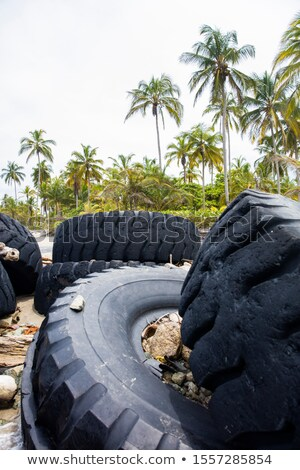 Used truck wheels in the tropical forest Stock photo © boggy