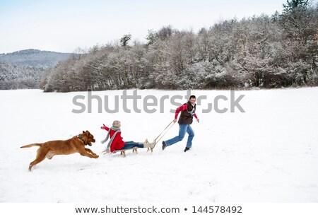 Kobieta człowiek chłodny zimą dzień Zdjęcia stock © Kzenon