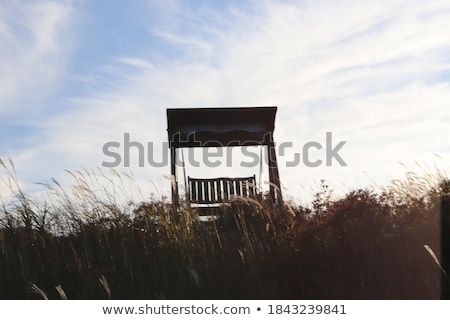 Bench chair in the grassland Stock photo © ajlber