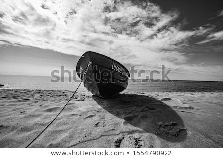 on the sea Stock photo © andrew_bourdyuko