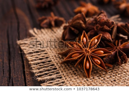 Photo stock: Anis · star · épices · blanche · fleur · cuisson