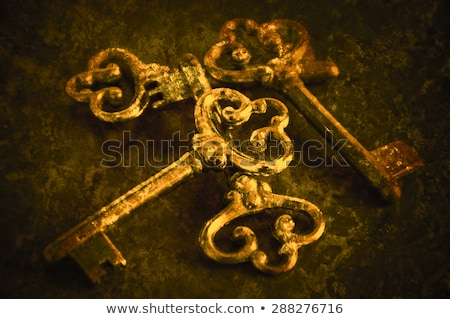 Silver ornated old door Stock photo © elxeneize