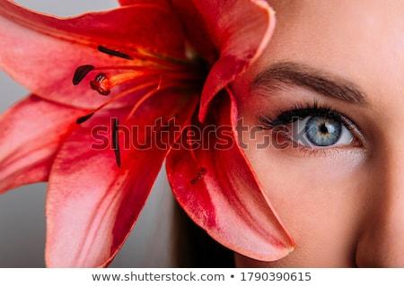 Yarım yüz kadın iş gülümseme Stok fotoğraf © pressmaster
