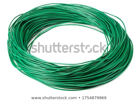 Electric wire isolated Stock photo © claudiodivizia