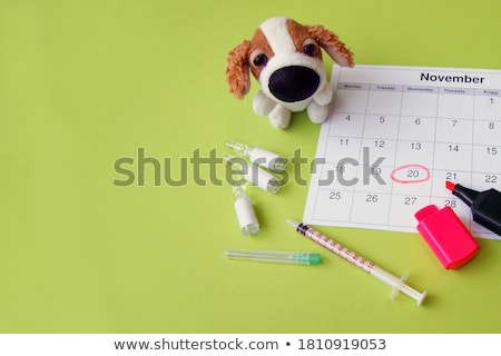Plague. Medical Concept on Green Background. Stock photo © tashatuvango