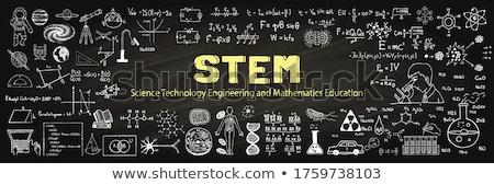Stengel onderwijs schoolbord illustratie computer natuur Stockfoto © bluering