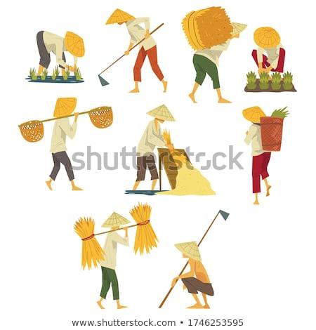 farmer with wicker basket set vector illustration stock photo © robuart