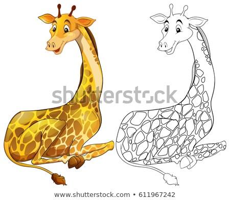 Dier giraffe illustratie natuur achtergrond Stockfoto © colematt