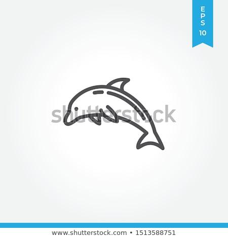 springen · dolfijn · icon · zwart · wit · vis · zee - stockfoto © angelp