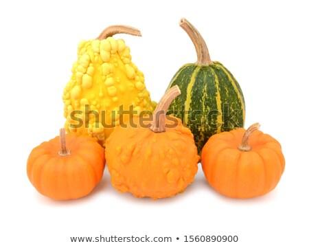 Pięć dekoracyjny skóry żółty zielone pomarańczowy Zdjęcia stock © sarahdoow