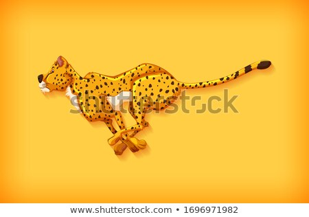 Background template design with plain color and cheetah running Stock photo © bluering
