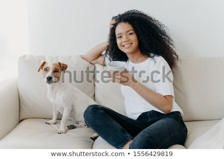 Optimista gyönyörű fiatal afrikai nő bent Stock fotó © deandrobot