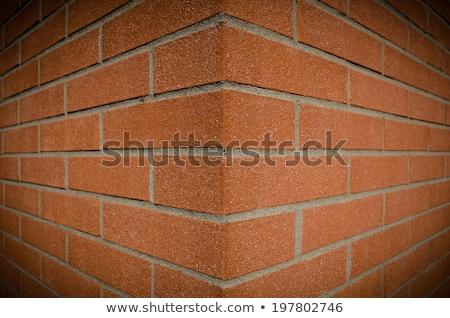 выветрившийся кирпичная стена углу горизонтальный белый окрашенный Сток-фото © bobkeenan