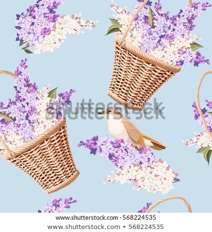 buquê · papel · flor · cesta · flores · primavera - foto stock © inxti