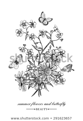 Bouquet with daisies and forget-me-not Stock photo © Zerbor