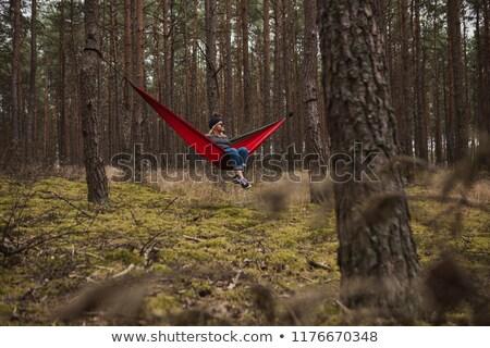 Stockfoto: Vreedzaam · hangmat · opknoping · pine · bomen · berg