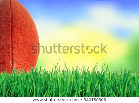 one football ball over green grass stock photo © jordanrusev