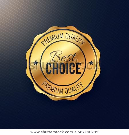 Arany legjobb választás kitűző terv üzlet érem Stock fotó © SArts