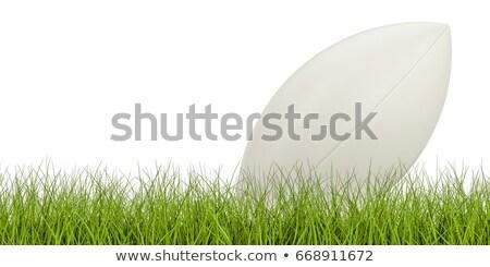 Rugby ball on grassy field Stock photo © wavebreak_media