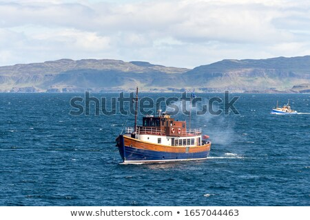 Small vessel on white Stock photo © studioworkstock