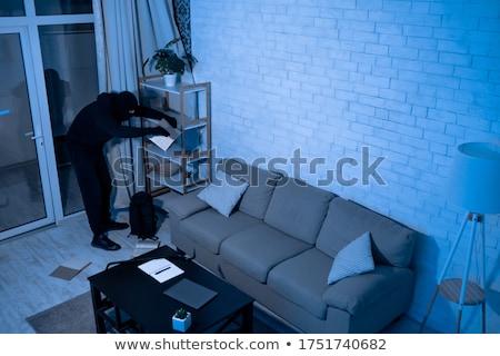 Ladro casa illustrazione home bar silhouette Foto d'archivio © adrenalina