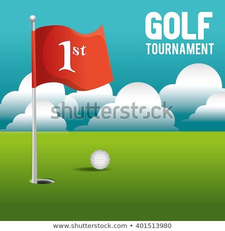 Etiqueta projeto golfball pin ilustração esportes Foto stock © colematt