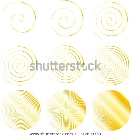 Dourado elegante preciso conjunto ilustração spiralis Foto stock © Blue_daemon