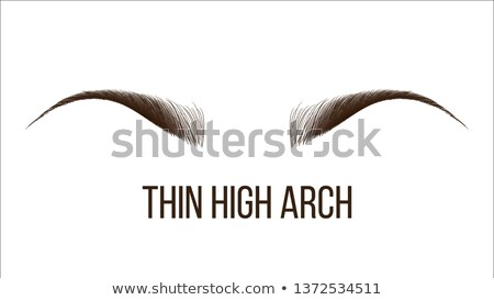 thin high arch vector hand drawn brows shape Сток-фото © pikepicture