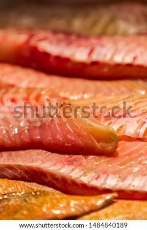 Rose fish (Sebastes norvegicus) meat Stock photo © boggy
