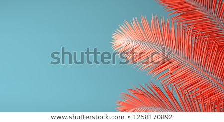 abstract living coral color background Stock photo © dolgachov