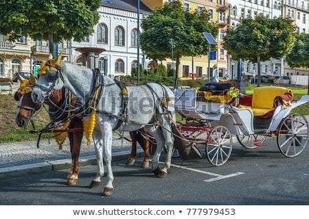 Stock photo: Carriage In Marianske Lazne Czech Republic